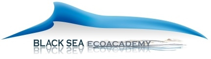 Logo BSEA