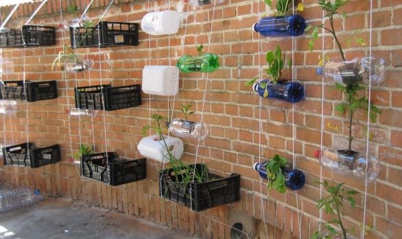 Vertical garden in a School