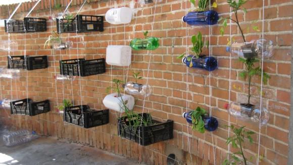 Vertical garden in a School